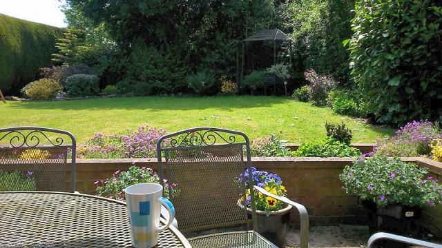 Back garden June 2016