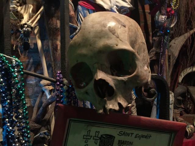 Mardi Gras Voodoo Museum skull